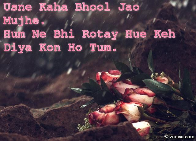 "Shayari for Bewafai""Usne Kaha Bhool Jao Mujhe"""
