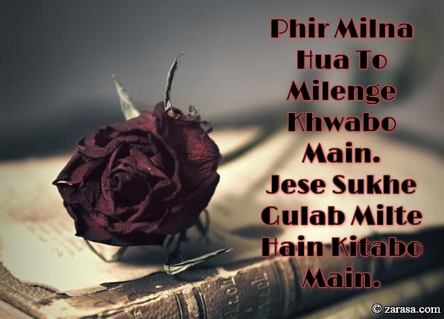 """Phool SHAYARI """"Jese Sukhe Gulab Milte Hain Kitabo Main"""""""