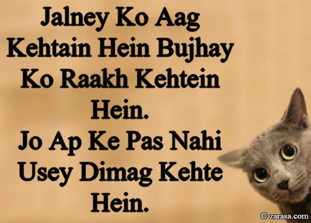 """Funny Shayari""""Jalney Ko Aag Kehtain Hein"""""""