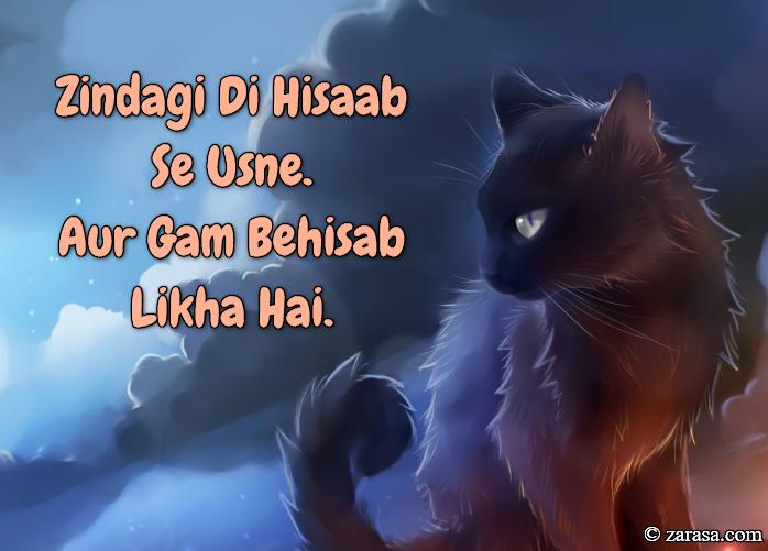 """Tanziya Shayari """"Zindagi Di Hisaab Se Usne"""""""