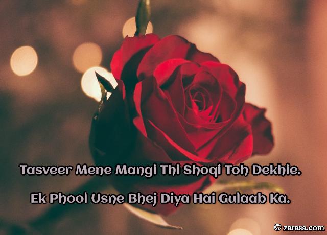 """Phool SHAYARI """"Ek Phool Usne Bhej Diya Hai Gulaab Ka"""""""