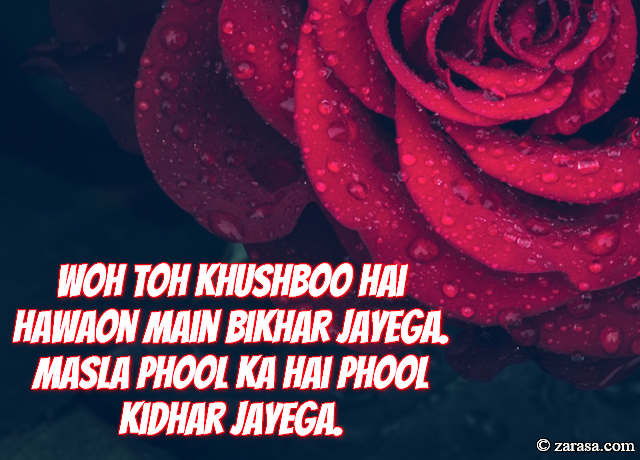 """Phool SHAYARI """"Masla Phool Ka Hai Phool Kidhar Jayega"""""""