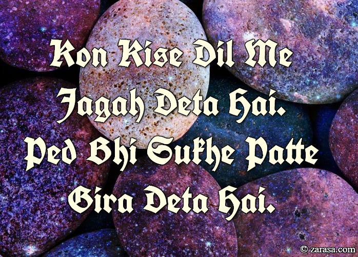 """Shayari For Zakhm """"Patte Gira Deta Hai"""""""