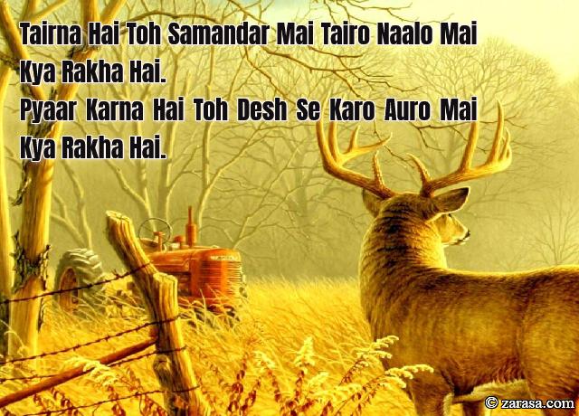 "Shayari for Country""Pyaar Karna Hai Toh Desh Se Karo"""