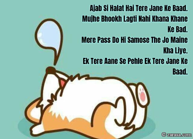 """Funny Shayari """"Ek Tere Aane Se Pehle Ek Tere Jane Ke Baad"""""""