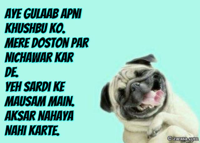"""Funny Shayari """"Aksar Nahaya Nahi Karte"""""""