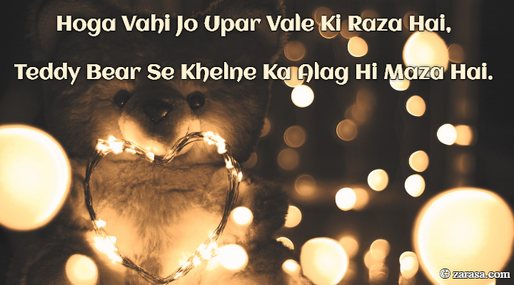 "Shayari for Teddy Day ""Teddy Bear Se Khelne Ka Alag Hi Maza Hai"""