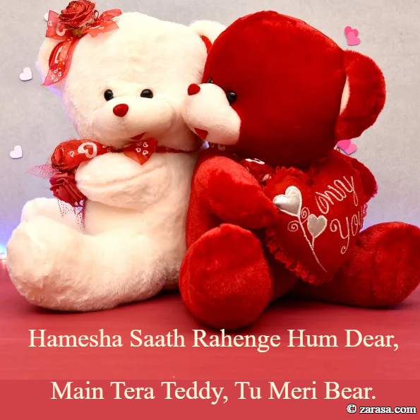 "Shayari for Teddy Day ""Main Tera Teddy"""
