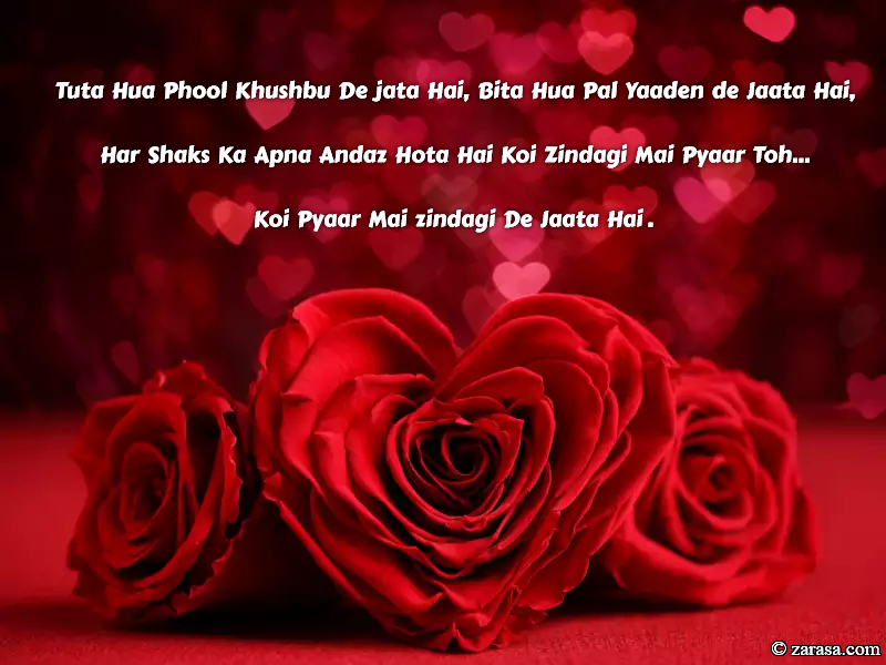 "Shayari for Rose day ""Tuta Hua Phool Khushbu De jata Hai"""