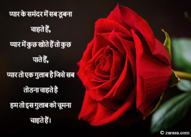 """Shayari for Rose day """"हम तो इस गुलाब को चूमना चाहते हैं। '"""